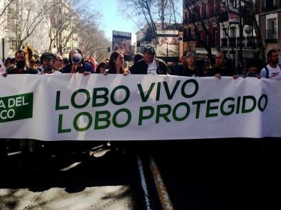 Manifestación por la protección del lobo ibérico