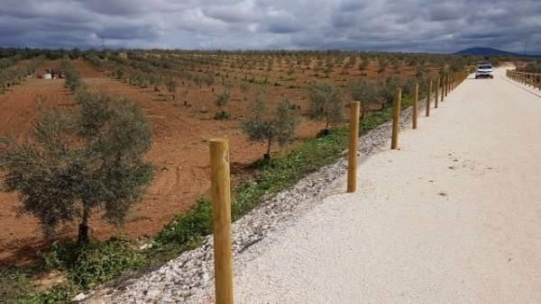 Imagen de la vía verde de La Roda