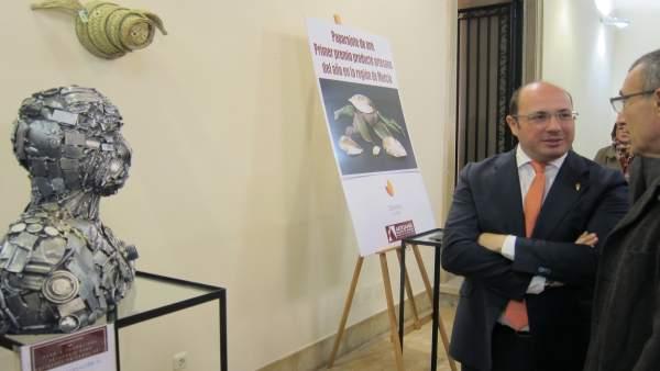 Pedro Antonio Sánchez, inaugura la exposición