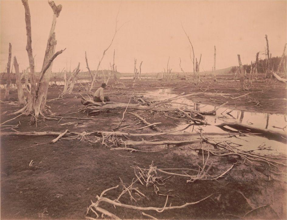 'Drowned Lands of the Lower Raquette, Adirondacks', c. 1888. Seneca Ray Stoddard denuncia, en una imagen tomada en torno a 1888, una consecuencia de la deforestación. La foto muestra las tierras anegadas del Lower Raquette, en Adirondacks, estado de Nueva York