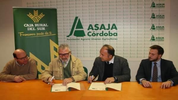 Acuerdo entre asaja y mart nez echevarr a abogados para for Clausula suelo plazo para reclamar