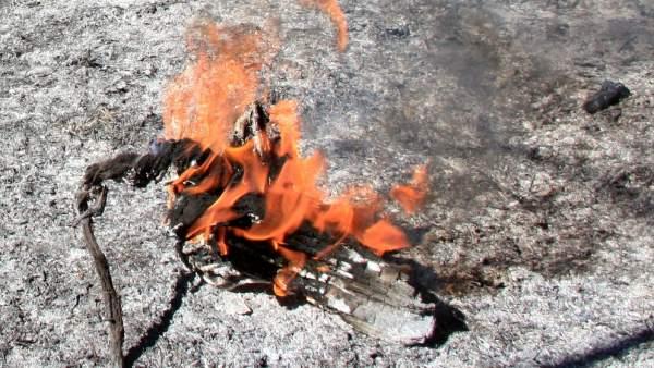 Bosque aún quemando en un incendio forestal producido en julio de 2016 en Cataluña.