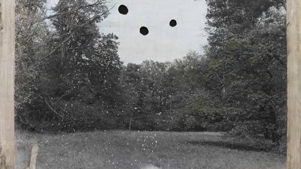 Jeff Cowen - Untitled Pfaueninsel 5, 2014