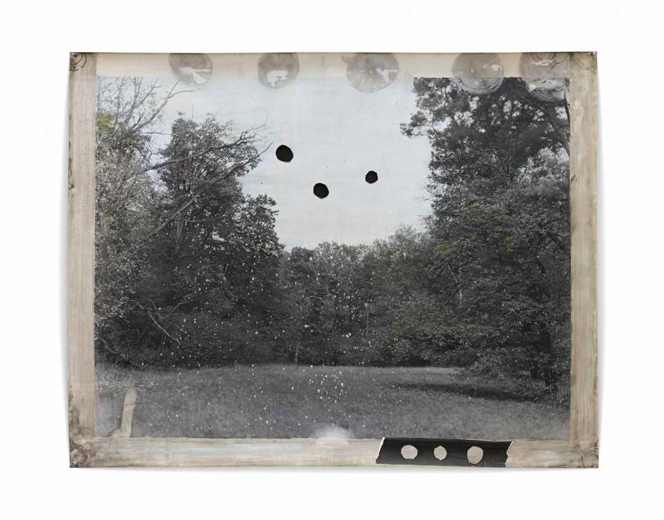 Jeff Cowen - Untitled Pfaueninsel 5, 2014. Paisaje fotografiado por Jeff Cowen