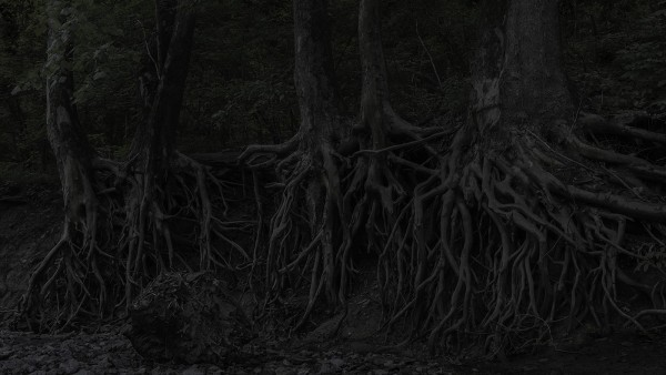 Jeanine Michna-Bales - Eagle Hollow from Hunter's Bottom. Just across the Ohio River, Indiana, 2014
