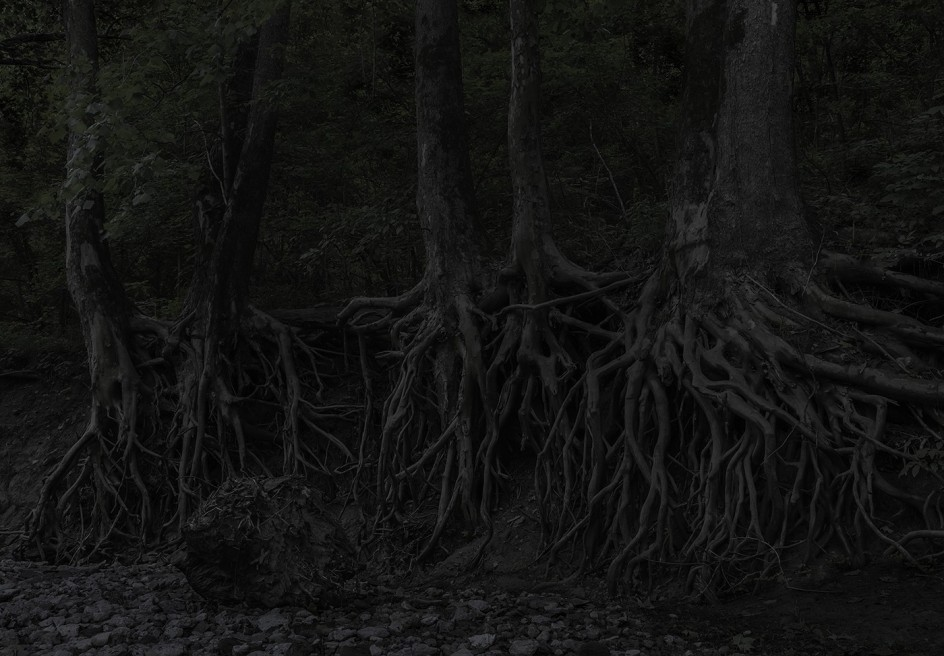 Jeanine Michna-Bales - Eagle Hollow from Hunter's Bottom. Just across the Ohio River, Indiana, 2014. La fotógrafa Jeanine Michna-Bales retrató lugares por los que pasaban las rutas secretas de fuga de los esclavos negros en el siglo XIX