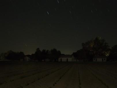 Jeanine Michna-Bales - Stopover. Frogmore Plantation, Concordia Parish, Louisiana, 2014