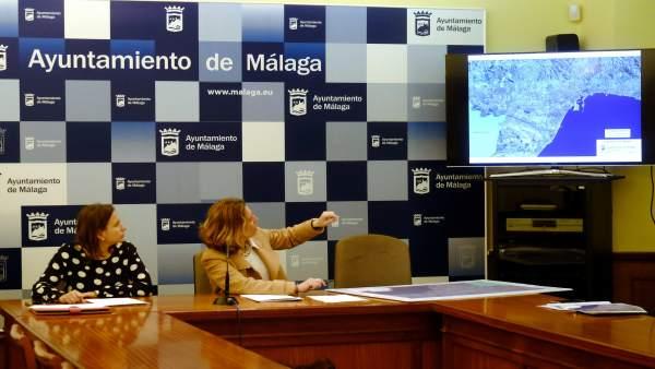 Elvira Maeso presentado carriles de bicileta