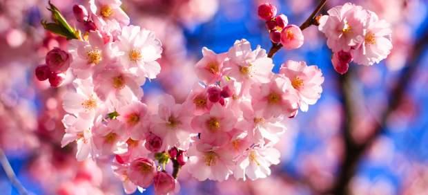 Primer día de la primavera