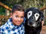 El emotivo encuentro de un niño con vitíligo y Rowdy, un perro con la misma enfermedadc