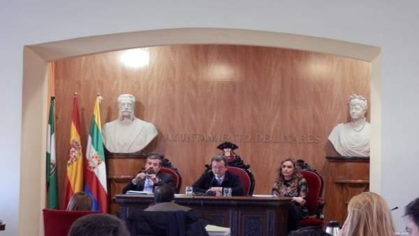 Pleno extraordinario por el plan Linares Futuro