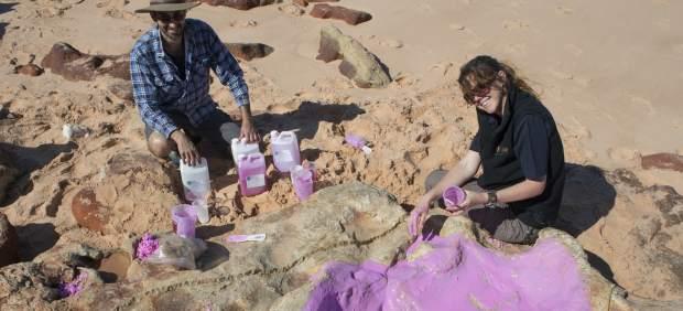 Huella de un dinosaurio en Australia