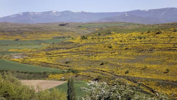 Geoparque de Las Loras