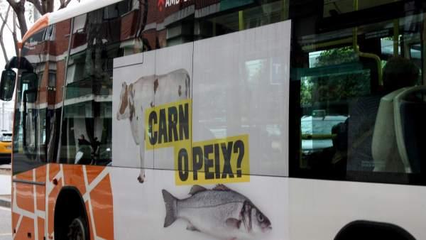 Imagen del autobús urbano de la campaña 'Sant Boi es diverso' contra la homofóbia.