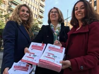 Presentación de la campaña del PSOE sobre el transporte en Expansión Norte.
