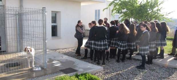 Las alumnas de Alcaste, en el Centro de Acogida de Animales