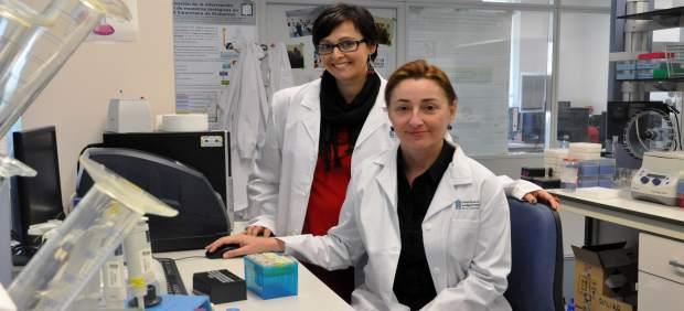 Investigadors valencians busquen millorar el diagnòstic de l'esquizofrènia i l'autisme