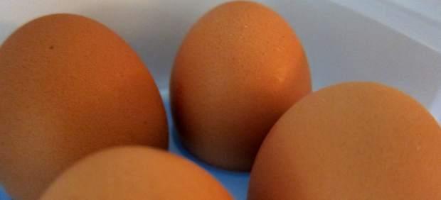 El corte ingl s dejar de vender huevos de gallinas for Clausula suelo ingles