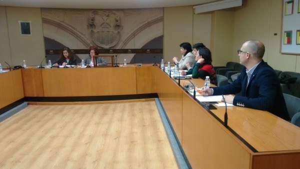Comisión Villamediana en el Parlamento
