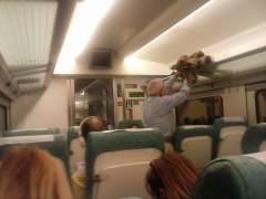 Tren de Renfe entre Madrid y Gijón