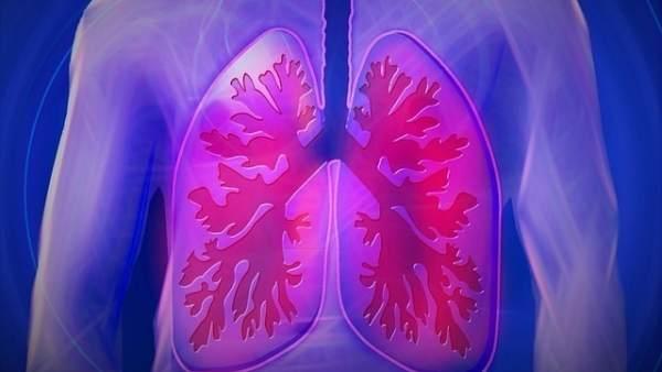 Imagen de los pulmones