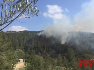 Incendio forestal en Tortosa (Tarragona)