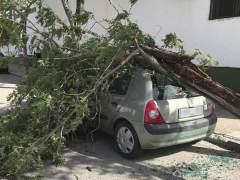 Temporal de viento en Cádiz