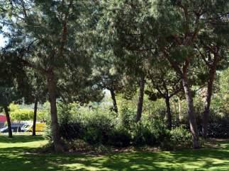Aposta pels treballs de jardineria a mà o amb maquinària per protegir la salut dels ciutadans que gaudeixen de les zones verdes.