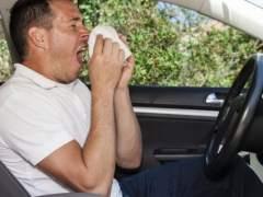 Si eres alérgico y conduces, ten en cuenta estos consejos