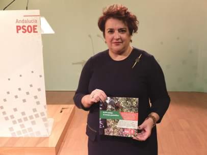 Secretaria general del PSOE de Granada, Teresa Jiménez.