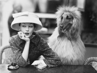 Dovima with Sacha, cloche and suit by Balenciaga, Café des Deux Magots, Paris, 1955. Photograph by Richard Avedon