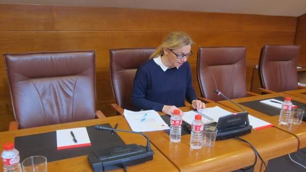 Cristina Mazas, diputada del PP y exconsejera Economía PP