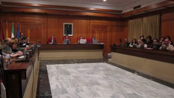 Celebración del Pleno del Ayuntamiento
