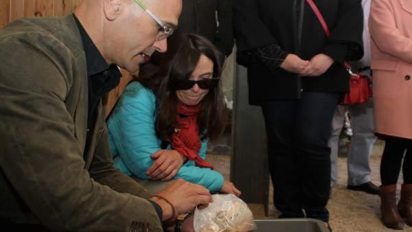 El conseller de Exteriores Raül Romeva con restos óseos de la Guerra Civil