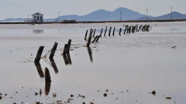 Imagen de las encañizadas del Mar Menor
