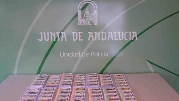 Los boletos de lotería incautados por la Policía Autonómica