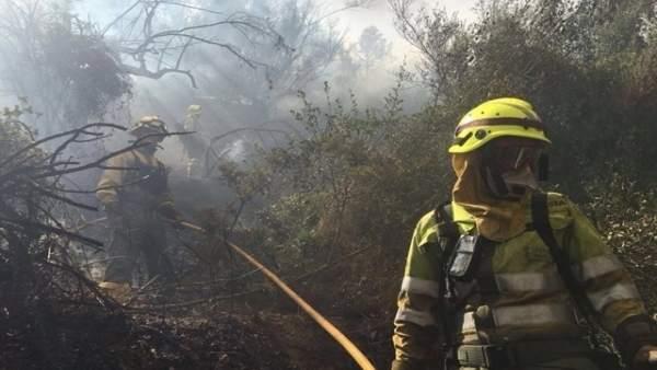 El fuego calcinó más de 1.500 hectáreas