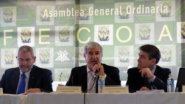 XXXII Asamblea General de Fecoam