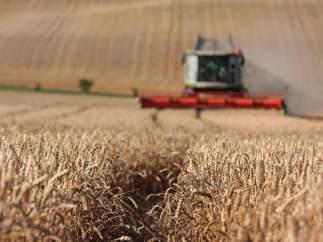 Camión, agricultura