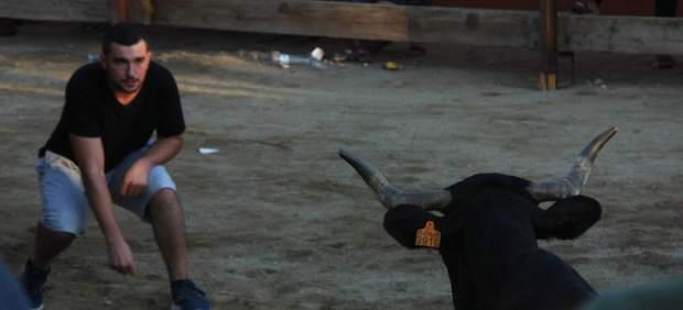 Un joven delante de una vaquilla en los 'correbous' de Morell (Tarragona)