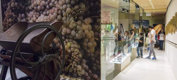 El Vinseum, el Museu de les Cultures del Vi de Catalunya, que està situat a Vilafranca del Penedès, destí d'enoturisme.