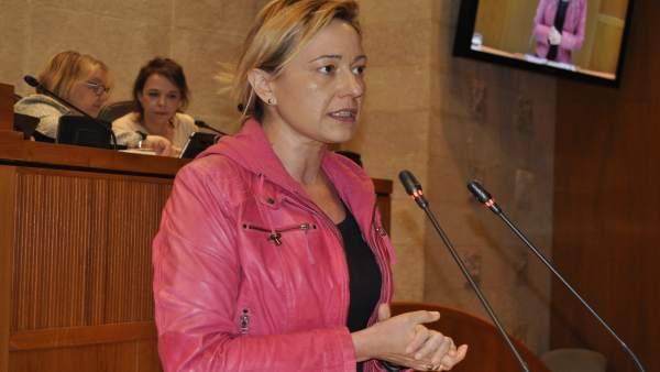La consejera Marta Gastón, en su intervención en el pleno de las Cortes