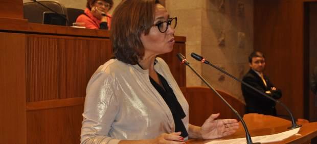 La consejera Mayte Pérez, en el pleno de las Cortes