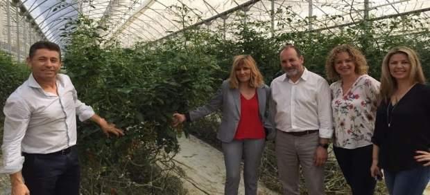 Arqueros, en su visita a invernaderos de Almería