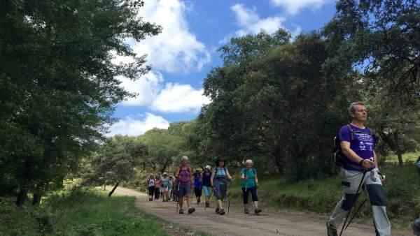 Aficionados al Nordic Walking en Huelva