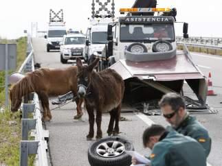 Nueve muertos en las carreteras durante el fin de semana