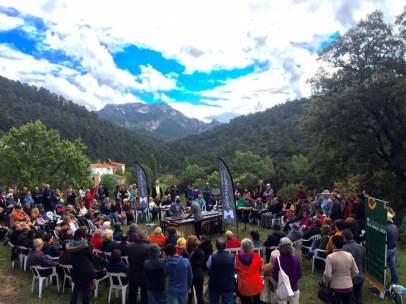 Festival Música en Segura