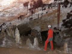 Los neandertales de Atapuerca, clave en la evolución