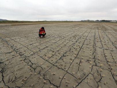 Sequía en Corea del Sur