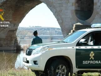 Agentes del Seprona
